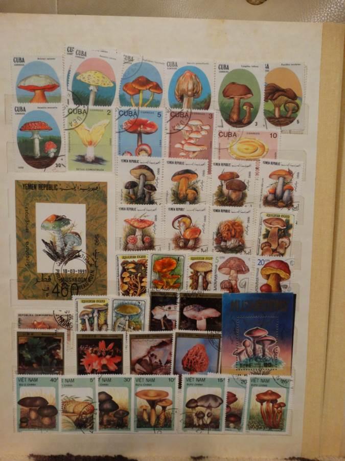 Марки-Коллекционирование-марок-страсть-моего-детства-4