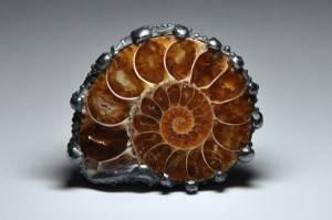 Аммонит-История-происхождение-и-свойства-камня-2