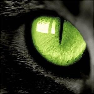Кошачий-глаз-Свойства-история-камня-Минералы-с-эффектом-Кошачьего-глаза-1