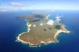 Морские-дары-Ниихау-и-особенности-изготовления-гавайских-украшений-1