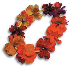 Морские-дары-Ниихау-и-особенности-изготовления-гавайских-украшений-7