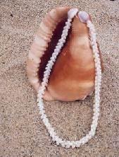 Морские-дары-Ниихау-и-особенности-изготовления-гавайских-украшений-3