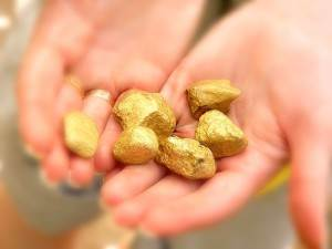 Образование-и-добыча-золота-в-реках-1