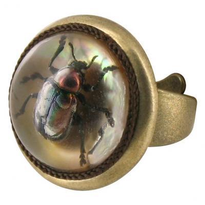 Кольцо-с-жуком-8