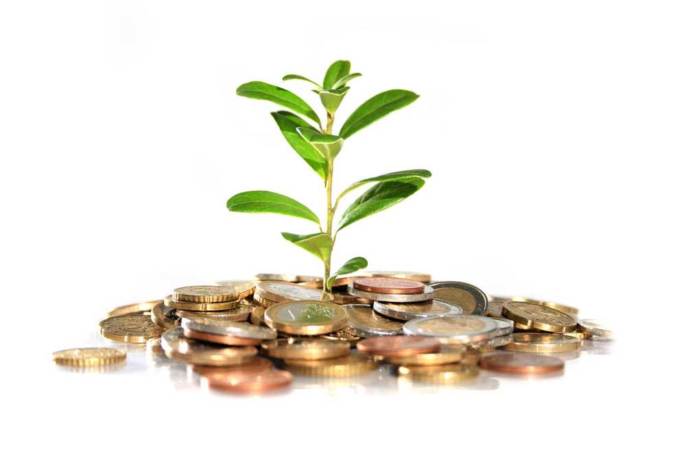 Инвестиционная-деятельность-4