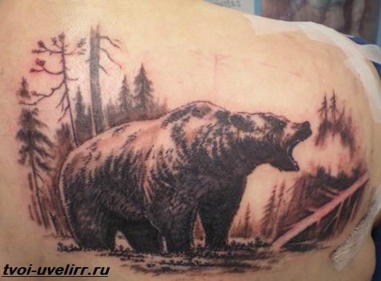 Тату-медведь-Значение-тату-медведь-Эскизы-и-фото-тату-медведь-6