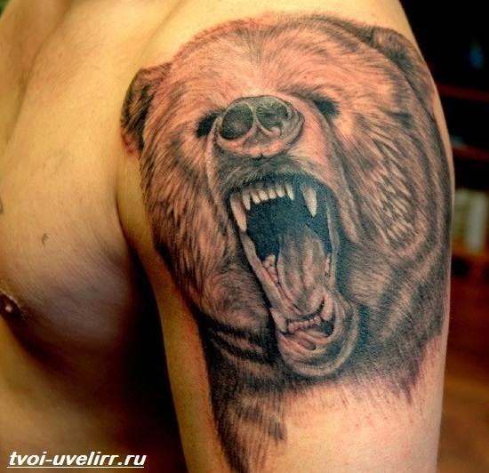 Тату-медведь-Значение-тату-медведь-Эскизы-и-фото-тату-медведь-7
