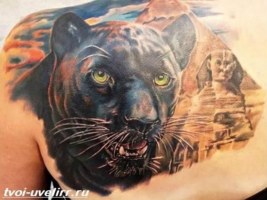 Тату-пантера-Значение-тату-пантера-Эскизы-и-фото-тату-пантера-1