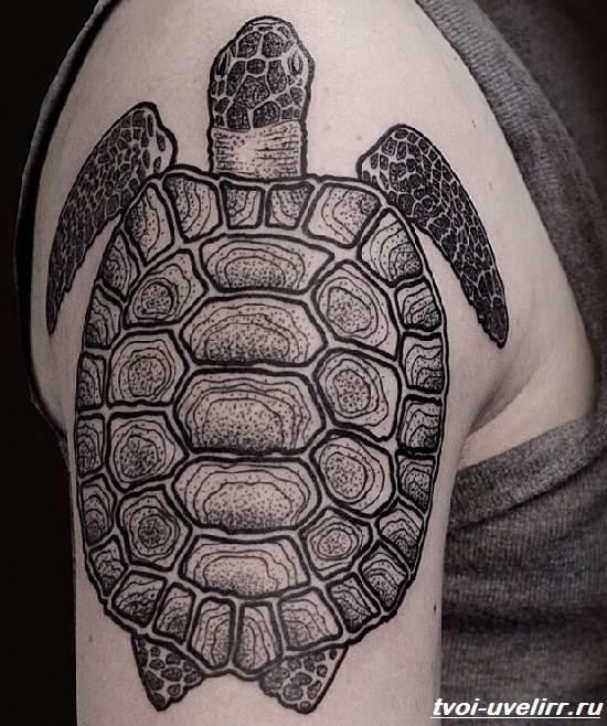 Тату-черепаха-Значение-тату-черепаха-Эскизы-и-фото-тату-черепаха-5