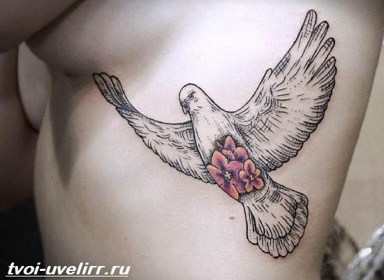 Тату-голубь-Значение-тату-голубь-Эскизы-и-фото-тату-голубь-2