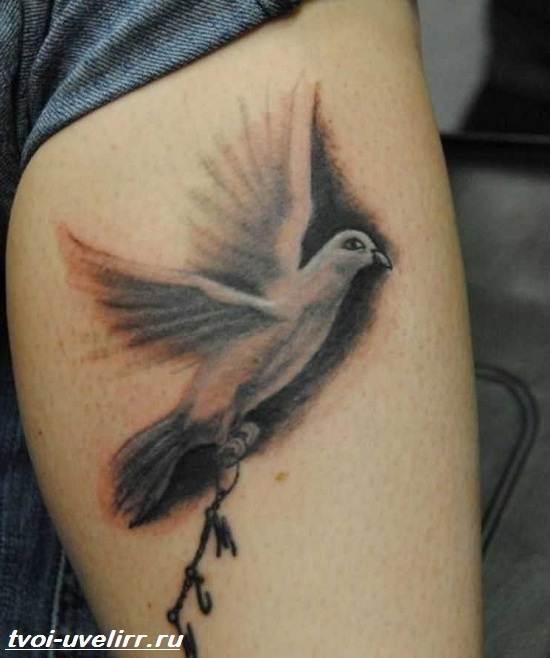 Тату-голубь-Значение-тату-голубь-Эскизы-и-фото-тату-голубь-4