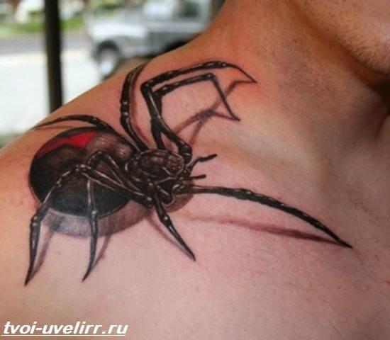 Тату-паук-Значение-тату-паук-Эскизы-и-фото-тату-паук-3