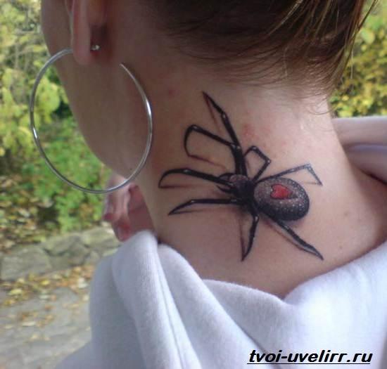 Тату-паук-Значение-тату-паук-Эскизы-и-фото-тату-паук-4