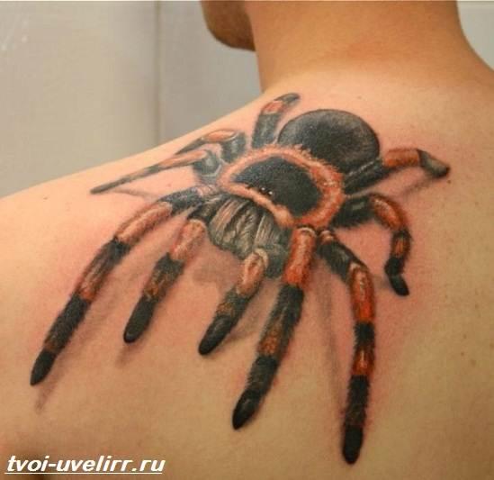 Тату-паук-Значение-тату-паук-Эскизы-и-фото-тату-паук-5