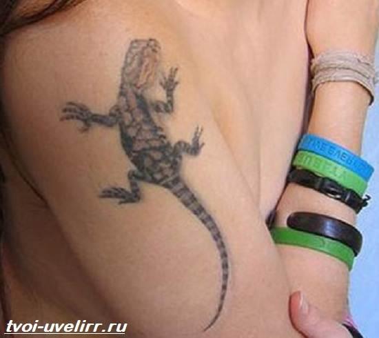 Тату-ящерица-Значение-тату-ящерица-Эскизы-и-фото-тату-ящерица-2
