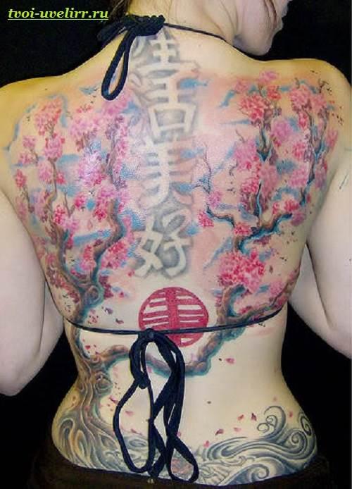 Тату-сакура-Значение-виды-и-особенности-тату-сакура-4