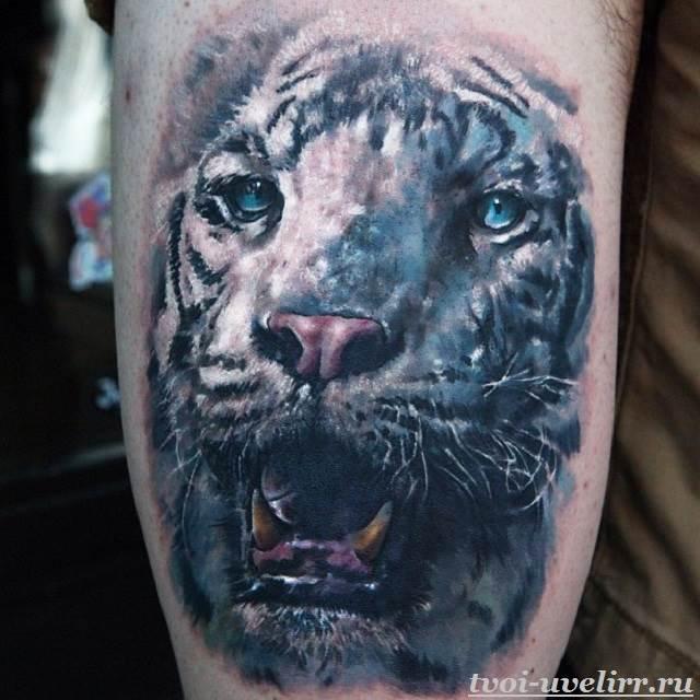 Тату-тигр-и-её-значение-15