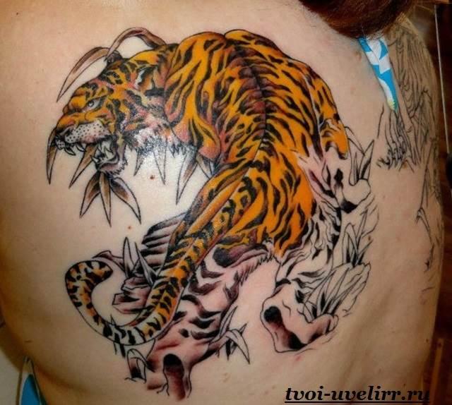 Тату-тигр-и-её-значение-22
