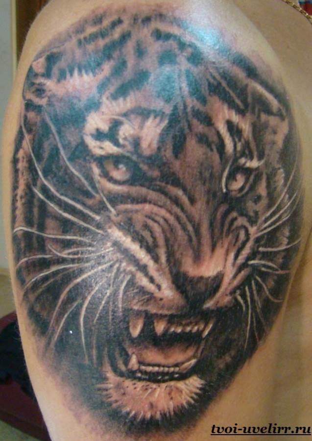 Тату-тигр-и-её-значение-3