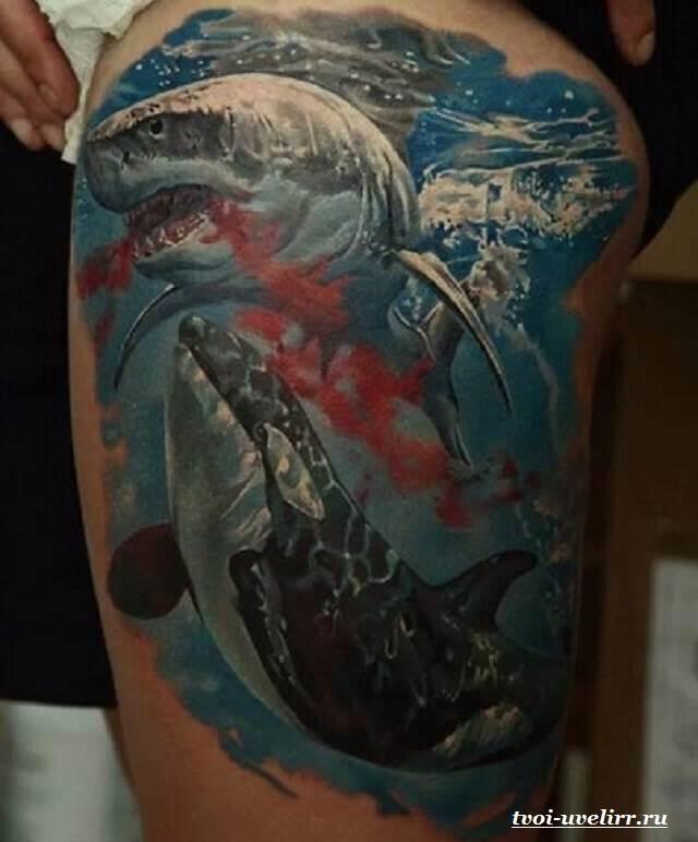 Тату-акула-и-её-значение-13