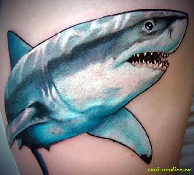 Тату-акула-и-её-значение-5