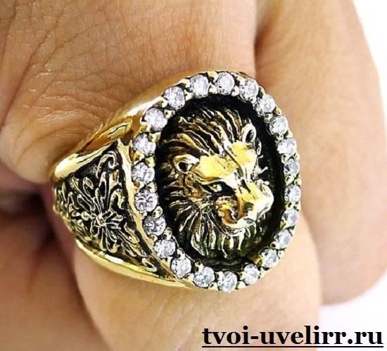 Кольцо-лев-Особенности-и-значение-кольца-лев-2