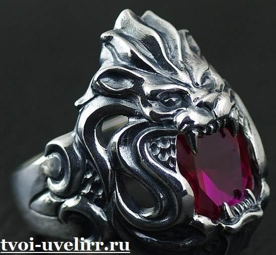 Кольцо-лев-Особенности-и-значение-кольца-лев-3