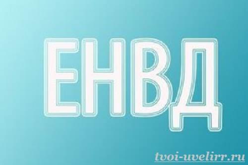 Что-такое-ЕНВД-1