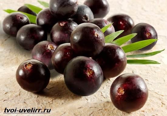 Ягоды-Асаи-Свойства-применение-отзывы-и-цена-ягоды-Асаи-1