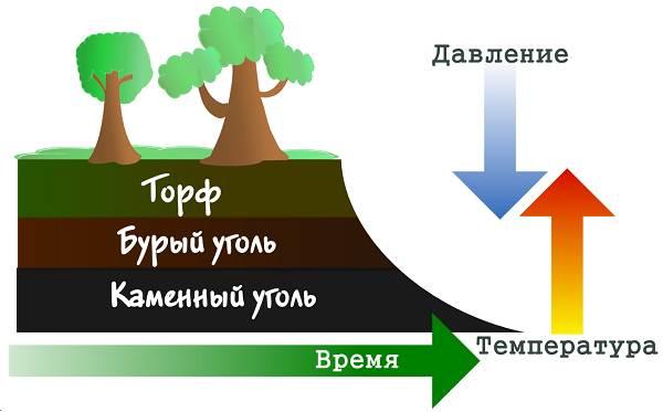 Каменный-уголь-Свойства-добыча-и-применение-каменного-угля-20