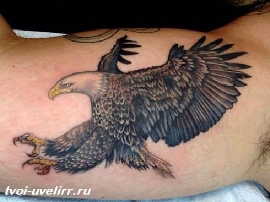 Тату-орел-Виды-и-значение-тату-орёл-7
