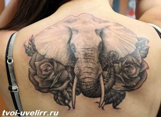 Тату-слон-Особенности-виды-и-значение-тату-слон-10