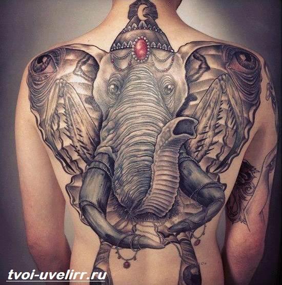 Тату-слон-Особенности-виды-и-значение-тату-слон-2