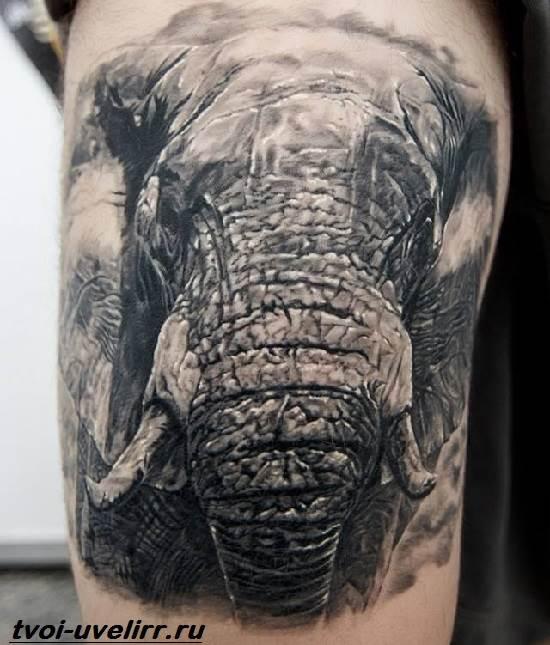 Тату-слон-Особенности-виды-и-значение-тату-слон-5