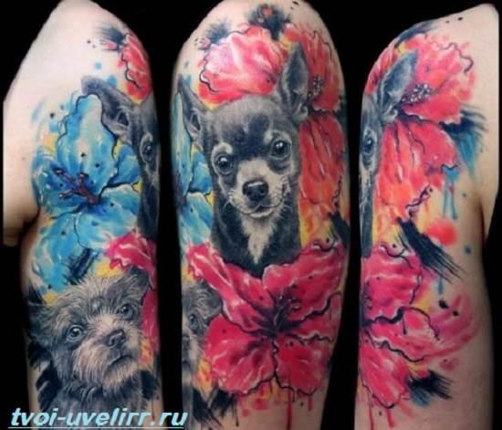 Тату-собака-Эскизы-и-значение-тату-собака-8