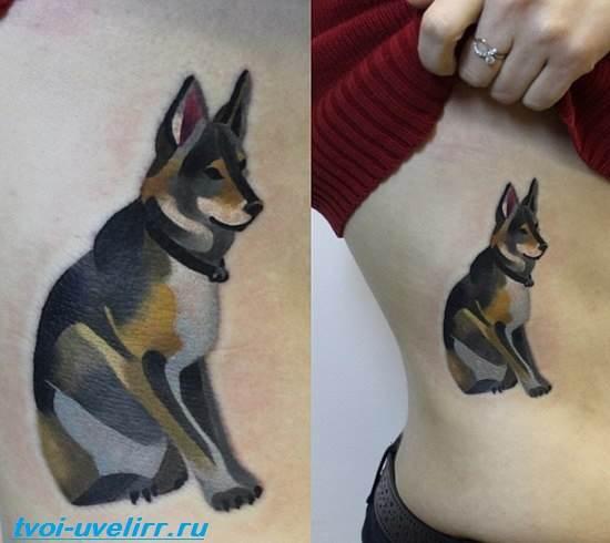 Тату-собака-Эскизы-и-значение-тату-собака-9