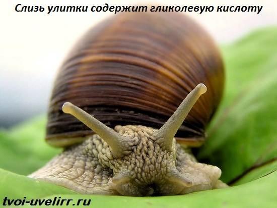 Гликолевая-кислота-Свойства-и-применение-гликолевой-кислоты-5