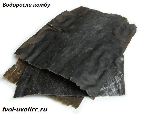 Глутамат-натрия-Свойства-и-применение-глутамата-натрия-1