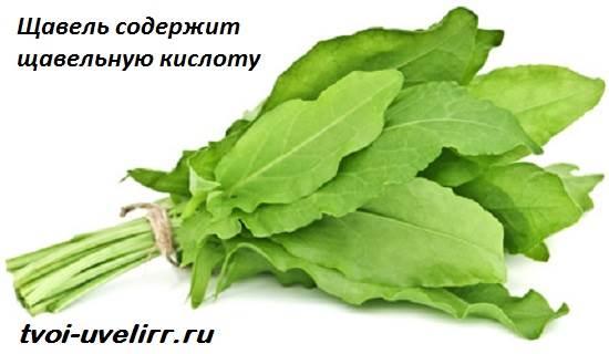 Щавелевая-кислота-Свойства-и-применение-щавелевой-кислоты-7
