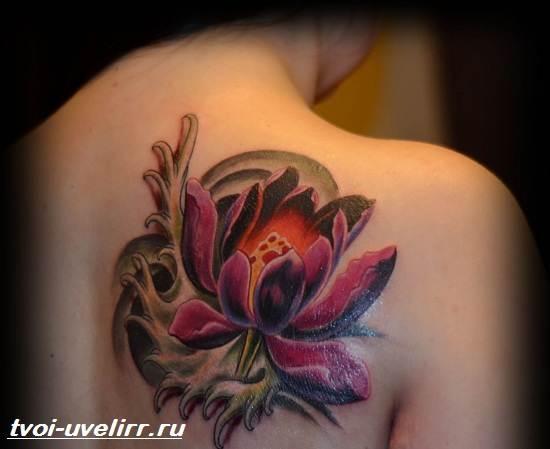 Цветные-тату-Значение-цветных-тату-Эскизы-и-фото-цветных-тату-3