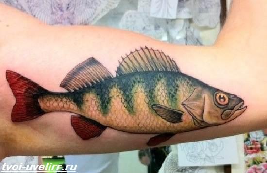 Тату-рыба-Значение-тату-рыба-Эскизы-и-фото-тату-рыба-10