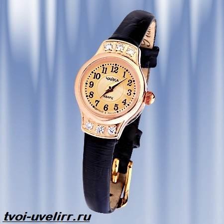 Часы-Чайка-Описание-особенности-отзывы-и-цена-часов-Чайка-9