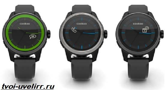 Часы-CooKoo-Описание-особенности-отзывы-и-цена-часов-CooKoo-5