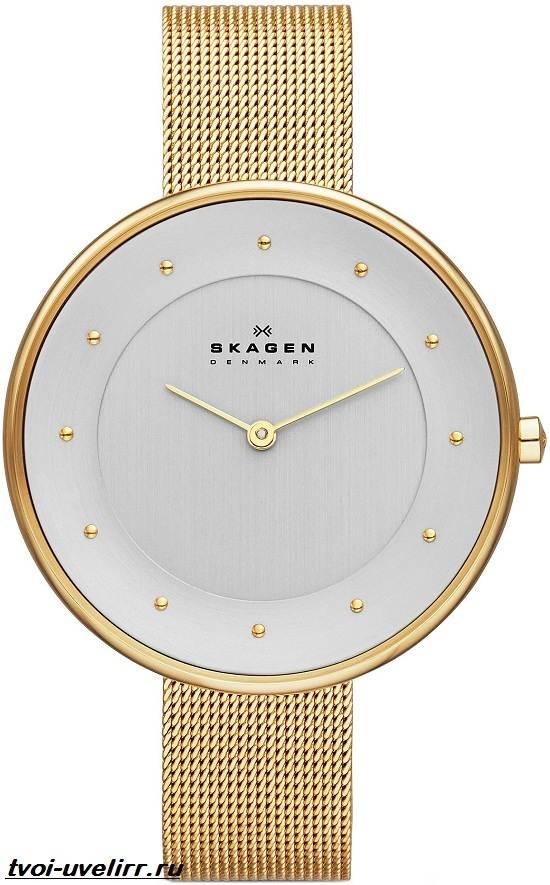 Часы-Skagen-Описание-особенности-отзывы-и-цена-часов-Skagen-6
