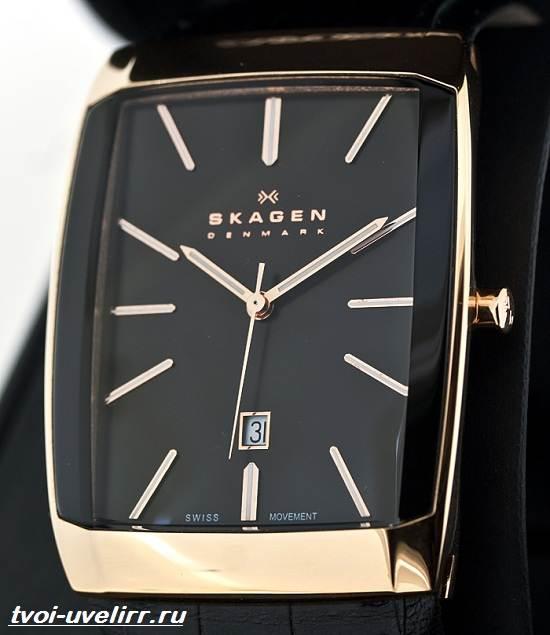 Часы-Skagen-Описание-особенности-отзывы-и-цена-часов-Skagen-8