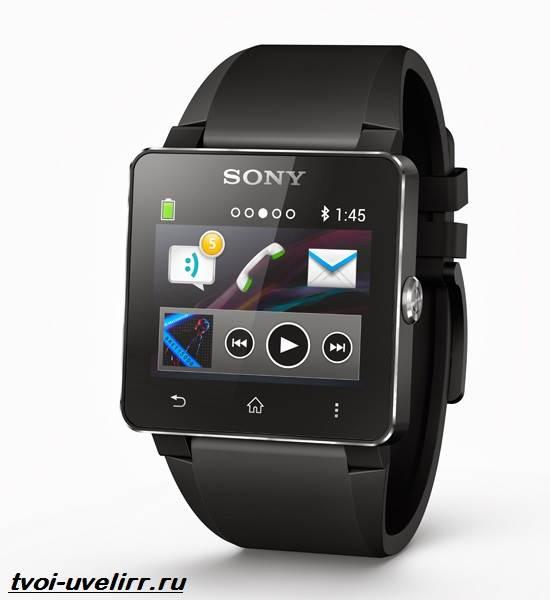 Часы-Sony-Описание-особенности-отзывы-и-цена-часов-Sony-1