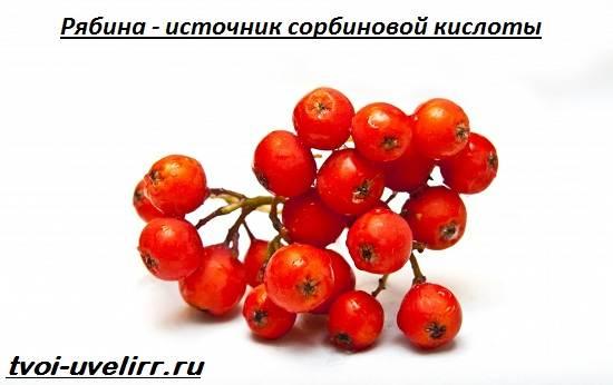 Сорбиновая-кислота-Свойства-производство-применение-и-цена-сорбиновой-кислоты-3
