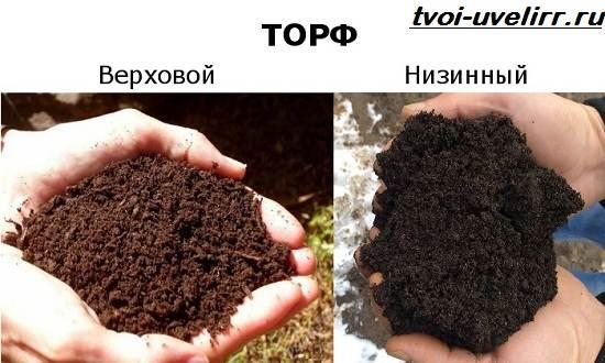 Что-такое-торф-Свойства-виды-добыча-применение-и-цена-торфа-9